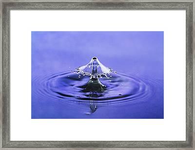 Water Drop Umbrella Framed Print