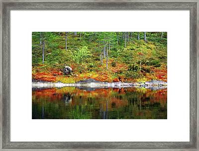 Water Edge Framed Print