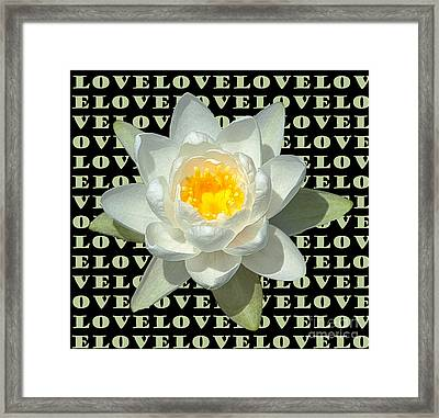 Water Lily Love Framed Print
