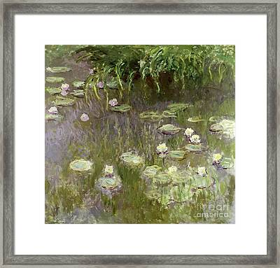 Waterlilies At Midday Framed Print by Claude Monet