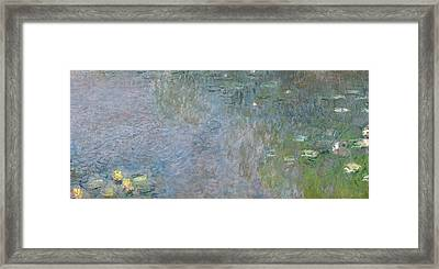 Waterlilies Morning Framed Print
