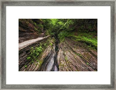 Watkins Glen Gorge  Framed Print by Michael Ver Sprill