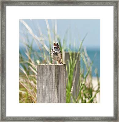 Welcome To The Cape Framed Print