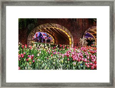 Welcoming Tulips Framed Print by Sandy Moulder
