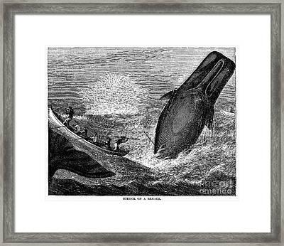 Whaling, 19th Century Framed Print by Granger