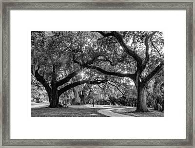 When I Dream... Framed Print