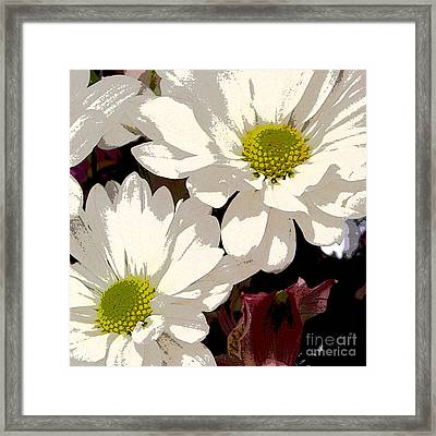 White Daisies Framed Print by Marsha Young