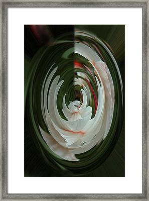 White Form Framed Print