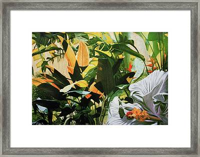White Hibiscus With Palms Framed Print