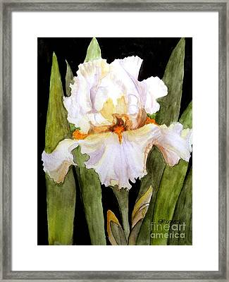 White Iris In The Garden Framed Print