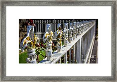 Framed Print featuring the photograph White Iron by Perry Webster