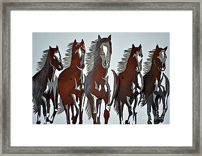 Framed Print featuring the photograph Wild And Free by Juls Adams