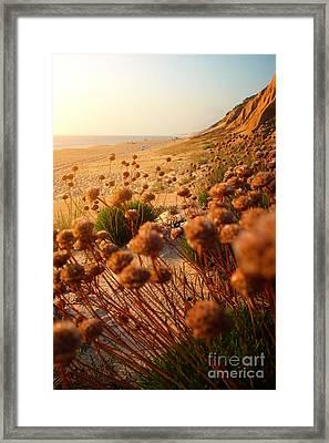 Wild Beach Framed Print by Carlos Caetano