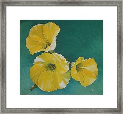 Wild Flower Framed Print by Maria Woithofer