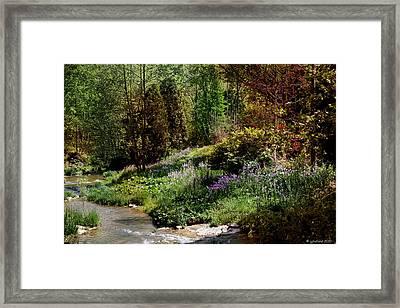 Wild Flowers Framed Print by Joseph G Holland
