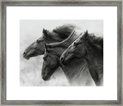 Wild Hearts Framed Print