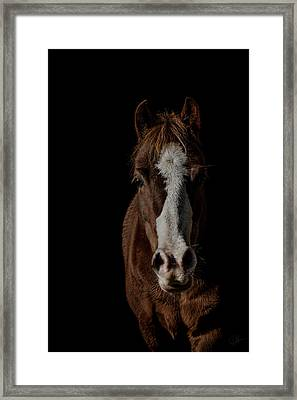 Window To The Soul Framed Print by Paul Neville