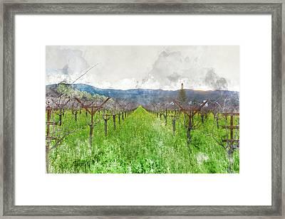 Wine Vineyard In Spring Framed Print by Brandon Bourdages