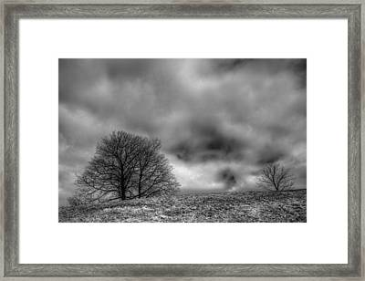 Winslow Park Framed Print