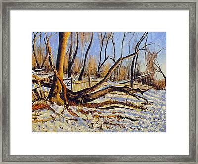 Winter Fence Framed Print by Vladimir Kezerashvili