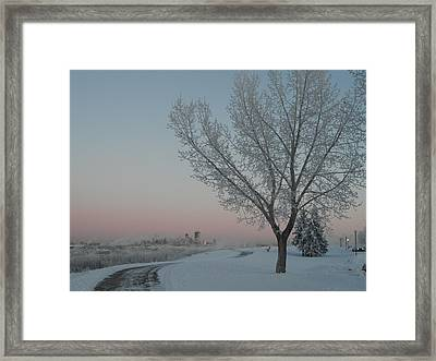Winter Guard Framed Print