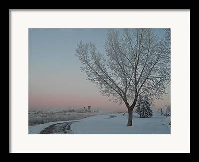 Lynnview Framed Prints