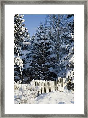 Winter Framed Print by Igor Sinitsyn