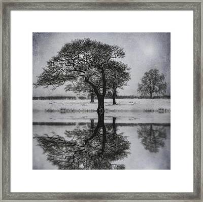 Winter Lake Framed Print by Ian Mitchell