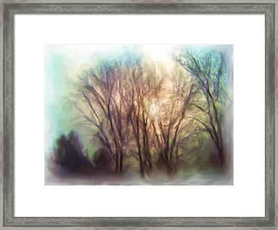 Winter Park Framed Print
