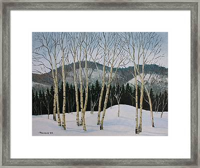 Winter Poplars Framed Print by Richard De Wolfe