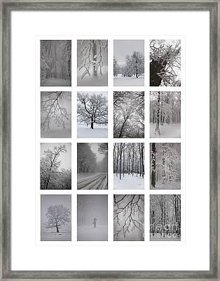 Winter Time Framed Print by Gabriela Insuratelu