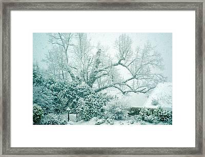 Winter Wonderland In Switzerland Framed Print