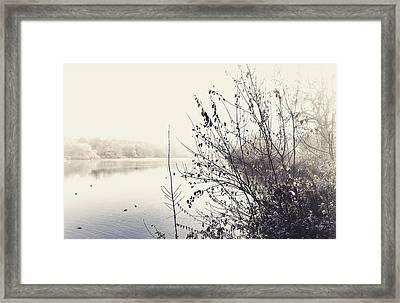Winter's Morning At The Mote  Framed Print by Stuart Ellesmere