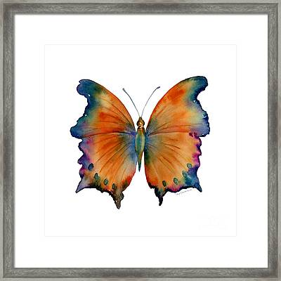 1 Wizard Butterfly Framed Print by Amy Kirkpatrick