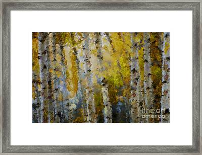 Yellow Aspens Framed Print by Marilyn Sholin