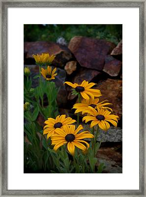 Yellow Beauty Framed Print by Cherie Duran