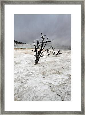 Yellowstone Mammoth Hot Springs Framed Print