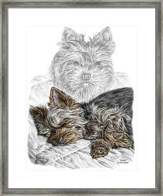 Yorkie - Yorkshire Terrier Dog Print Framed Print by Kelli Swan