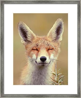 Zen Fox Series - Happy Fox Is Happy Framed Print by Roeselien Raimond