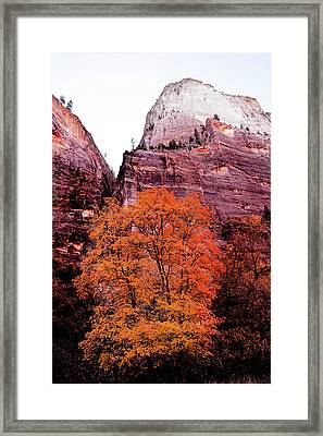 Framed Print featuring the photograph Zion National Park by Norman Hall