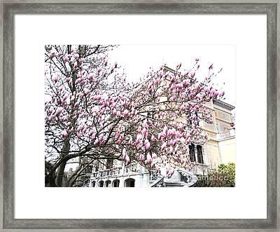 zurich- Villa patumbah Framed Print