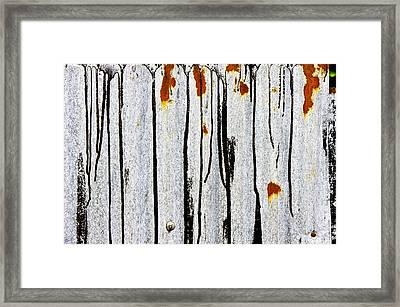 Corrugated Metal Framed Print by Tom Gowanlock