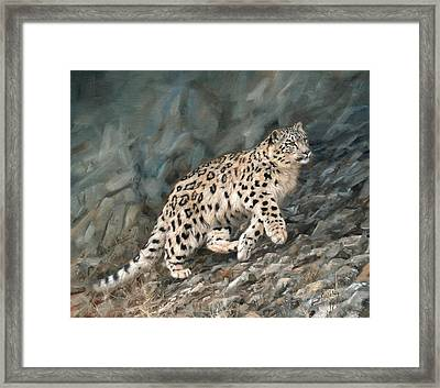 Framed Print featuring the painting Snow Leopard by David Stribbling