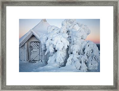 Winter In Lapland Finland Framed Print