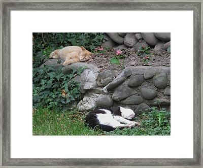 You And Me Framed Print by Valia Bradshaw