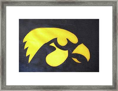 10724  Iowa Hawkeye Framed Print by Pamela Williams