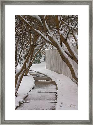 10735 Crepe Myrtles In Snow Framed Print by John Prichard