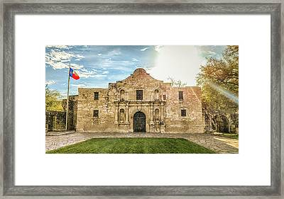 10862 The Alamo Framed Print by Pamela Williams