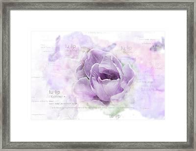 10947 Tulip Framed Print