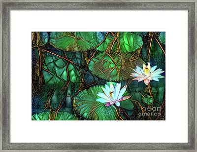 Jeweled Water Lilies Framed Print by Amy Cicconi